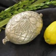 Have Lula & Etrog Will Travel